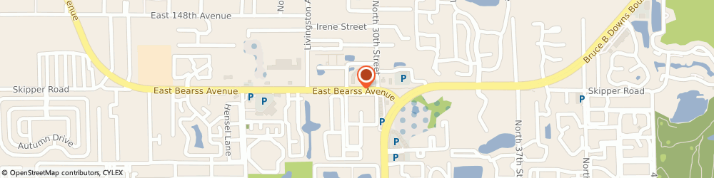 Route/map/directions to Executive Privilege Defense Systems, 33613 Tampa, 2830 EAST BEARSS AVENUE
